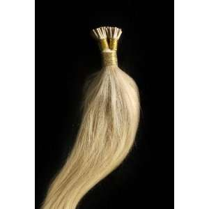 16 100grs,100s,Stick (I) Tip Human Hair Extensions #24 Light Golden