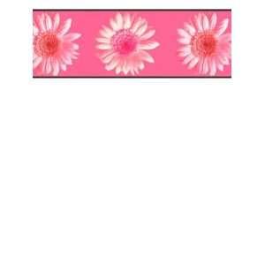 Wallpaper York Girl Power RU8301B: Home Improvement