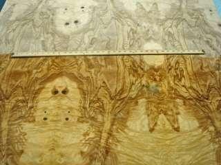 Olive Ash Burl wood veneer 48 x 79 with wood backer
