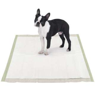 Biodegradable Eco Friendly Puppy Wee Wee Training Pads 200ct
