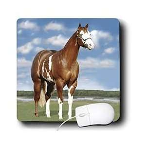Horse   Champion Paint Quarter Horse   Mouse Pads