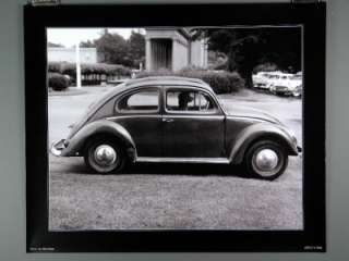 Volkswagon Bug, VW Beetle, Poster Poodle in Bug by Nat Norman