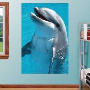 Sea World Fathead Wall Graphic Dolphin Mural Sports