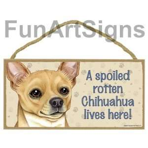 Chihuahua (Brown)   A Spoiled Rotten Chihuahua Lives Here