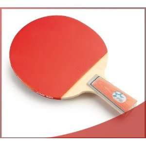 DHS X1007 (Penhold) New X Series Recreational Table Tennis