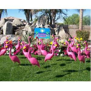 24 Large Plastic Pink Flamingos in Bulk and a Youve Been Flocked