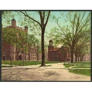 Reprint of Phelps Hall and Lyceum, Yale College
