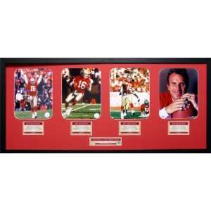 Joe Montana San Francisco 49ers Framed Dynasty Collage