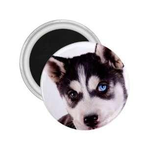 Siberian Husky Puppy Dog 16 2.25in Magnet R0630