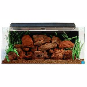 SeaClear 40 Gallon Tanks   Aquariums   Fish