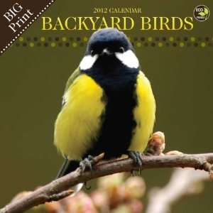 Backyard Birds Big Print 2012 Wall Calendar Office Products