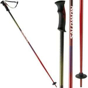 Salomon F1 Alpine Ski Pole: Sports & Outdoors