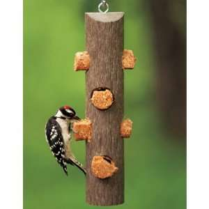 Plastic Suet Log Feeder 12 long x 2.5 dia: Pet Supplies
