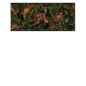 Wallpaper York Border Gallery Hardwood Green JL1028B
