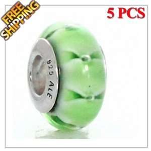 5PCS Authentic Solid Sterling Silver Core Lampwork Murano Glass Charm